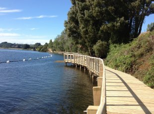 Cambridge to Karapiro Te Awa Walk/Cycle Way