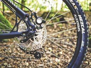 i-SITE自行车租赁