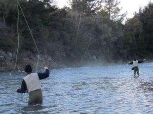 怀卡托河垂钓之旅 Fishing
