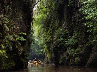 Walk Bike and Kayak Tri-Venture