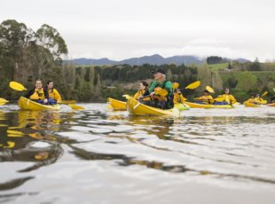 27102016 News Photo: CHRISTEL YARDLEY/FAIRFAX NZ