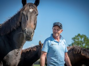 Waikato Thoroughbred Horse Stud Tour