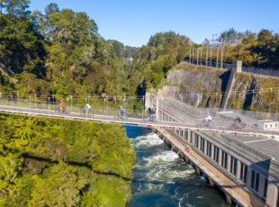 Waikato River Trail Guided Cycle Tour