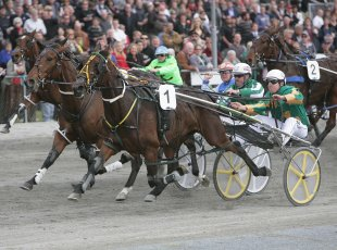 Harness Racing-Harness Jewels