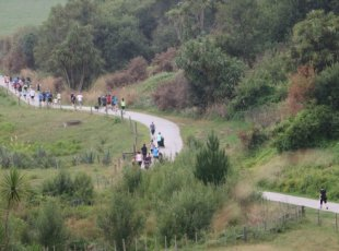 Cambridge NZ Park Run