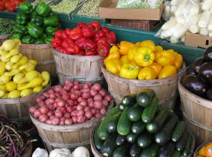Cambridge Farmers Market on 30 June