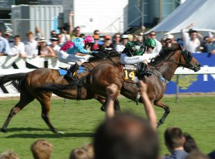 Cambridge Jockey Club Summer Raceday