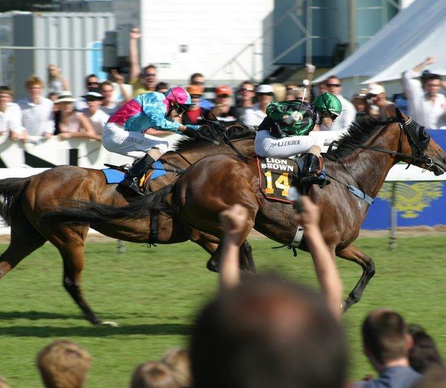 Cambridge Jockey Club Summer Raceday