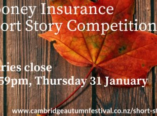 Cooney Insurance Short Story Competition