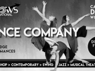 Dance Company Workshops