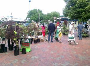 Cambridge Market-Trash 'n' Treasure