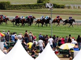 Cambridge Jockey Club Races