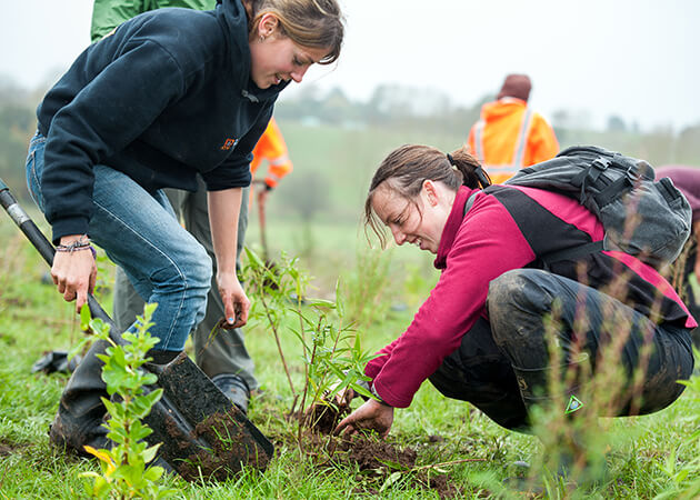 Arbor Day Planting at Waiwhakareke