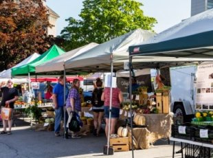 Tamahere Country Market – Cancelled