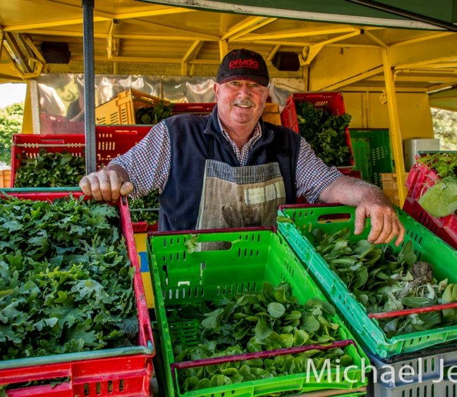 Lettuce Man Offer – Cambridge Farmers Market on 21 September