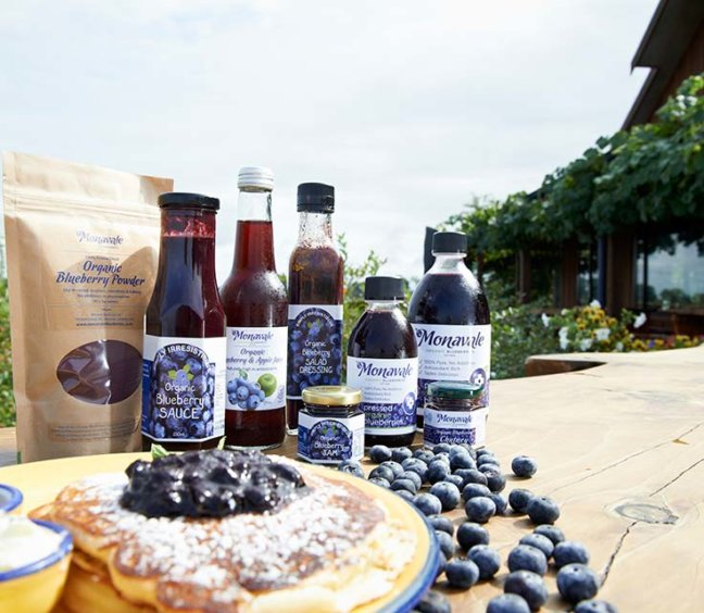 Blueberry Bliss at Cafe Irresistiblue