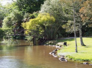 Woodside Estate Open Garden Festival