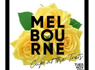 Melbourne Cup Day at Cambridge Raceway