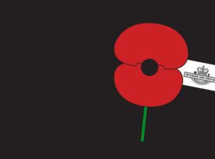 Cambridge Armistice Day Commemorative Service