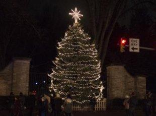 Cambridge Community Christmas Tree Light-up