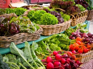 Cambridge Farmers' Market – Closed this weekend