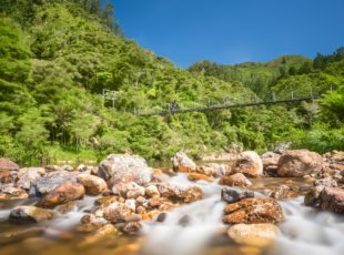 Explore Waihi Day Trip – from Cambridge