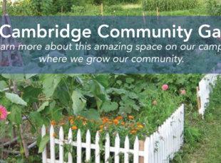 Cambridge Community Garden – Open Day