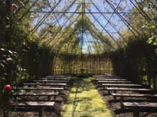 Tree Church Garden Visit – Ohaupo