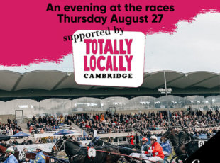Harness Racing – Welcome to Cambridge