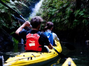Glowworm Kayak Trip, Bed & Breakfast