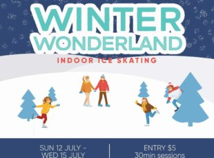 Winter Wonderland-Indoor Ice Skating