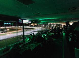 Friday Night Harness Racing under the Lights