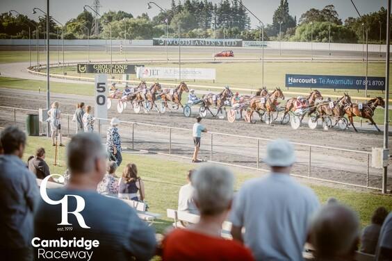 Harness Racing  Cambridge Raceway
