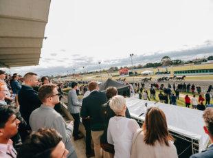 Cambridge Horse Festival- Waitangi Day 2021