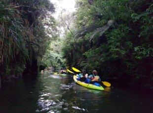 Gloworm Kayak