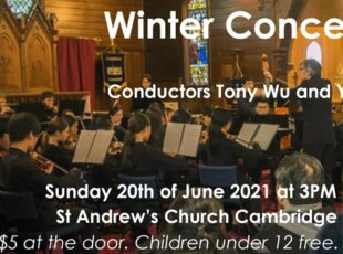 United Youth Orchestra – wWnter Concert
