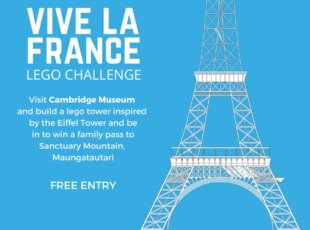 Tower Lego Challenge