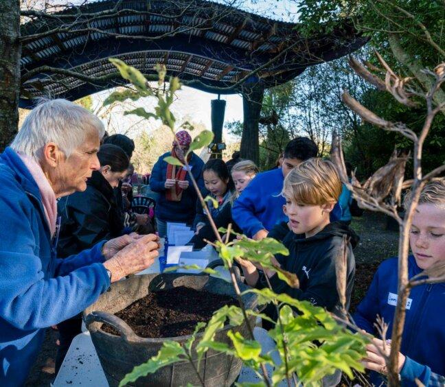 Creative Play Month – Sculpture Park at Waitakaruru Arboretum