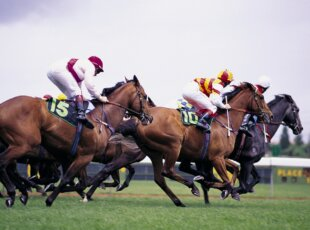 **Cancelled**Frock & Frolic Melbourne Cup Day At The Henley