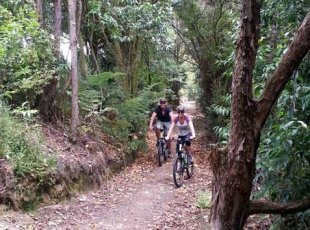 Mountain Biking Guided Tour to Te Miro Park