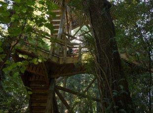 芒格陶塔伊自然保护区南线徒步之旅 Sanctuary Mountain Southern Enclosure